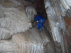 cova cornavaques