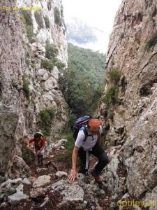 Serra-dels-Puntals-(105)